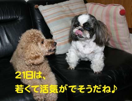 1_20121016175103.jpg