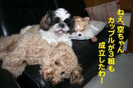 1_20121023153849.jpg