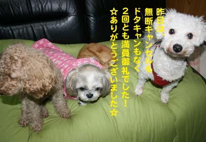 1_20121119153211.jpg