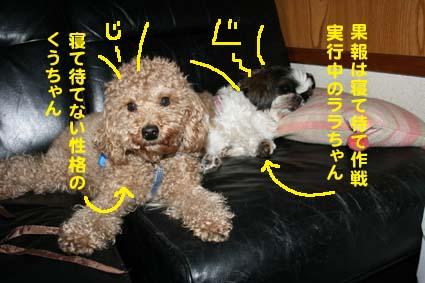 2_20120502203705.jpg