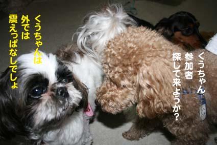 2_20120610182912.jpg