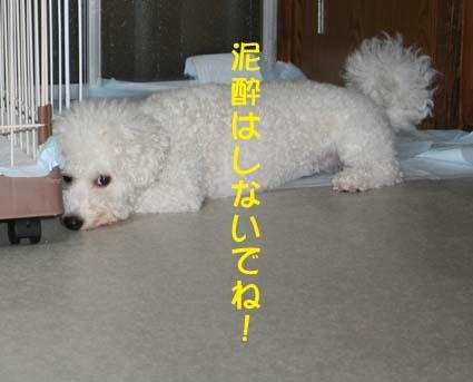 2_20120706223610.jpg