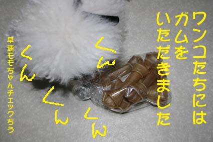 2_20120711180446.jpg