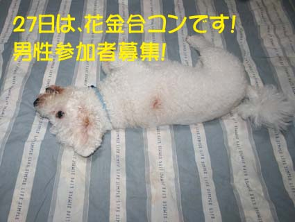 2_20120718012936.jpg