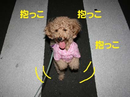 2_20120904010557.jpg