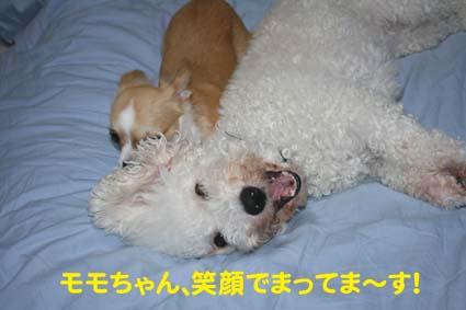 2_20120916192910.jpg