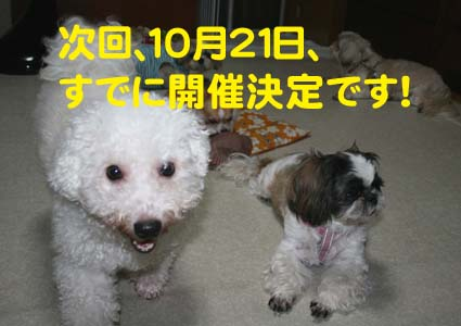 2_20121010172923.jpg
