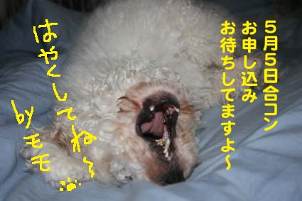 3_20120502203704.jpg