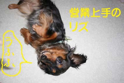 3_20120629132549.jpg