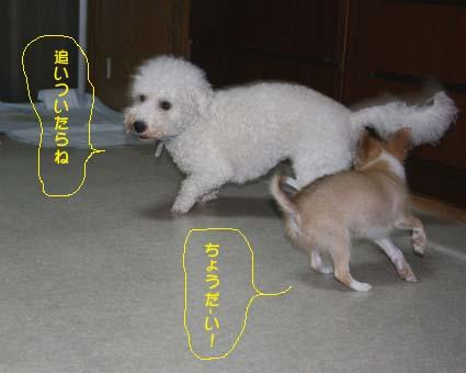 3_20120711180446.jpg