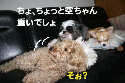 3_20120914182201.jpg