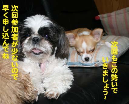 3_20121023153848.jpg