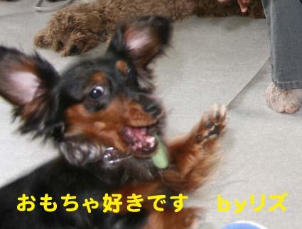 4_20120427123716.jpg