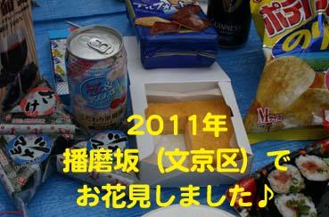 IMG_8024.jpg