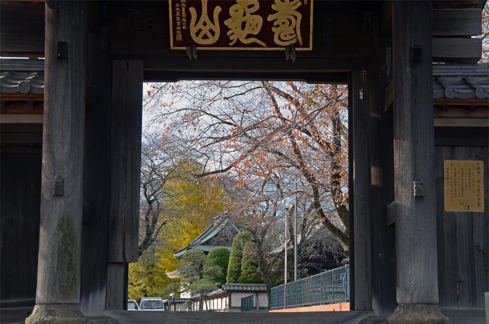 DSC_7507弘経寺