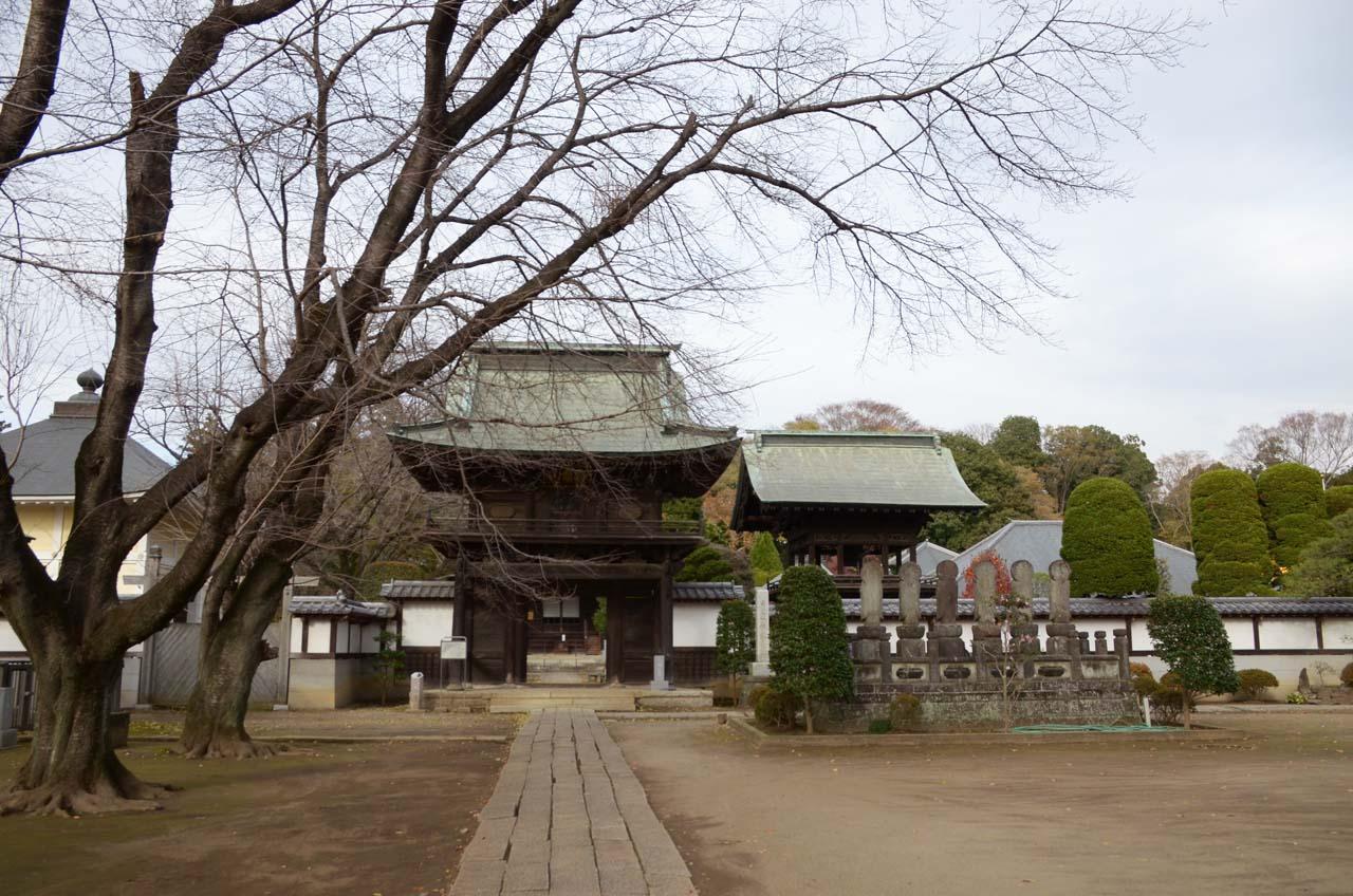 DSC_7508弘経寺