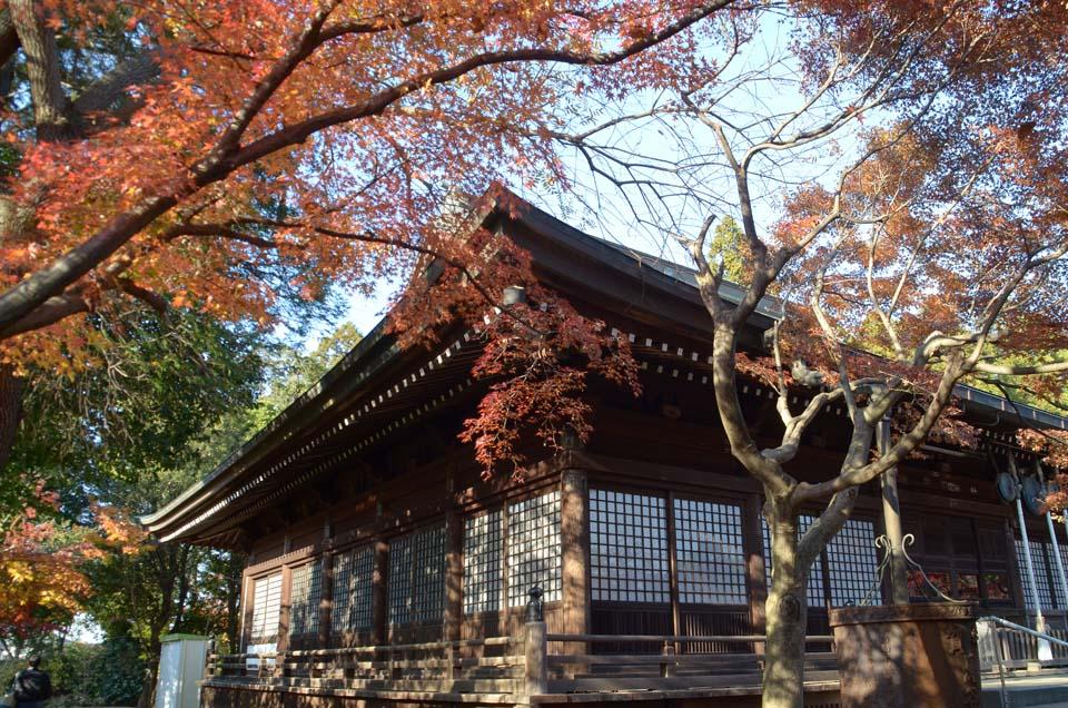 D70_0350本土寺
