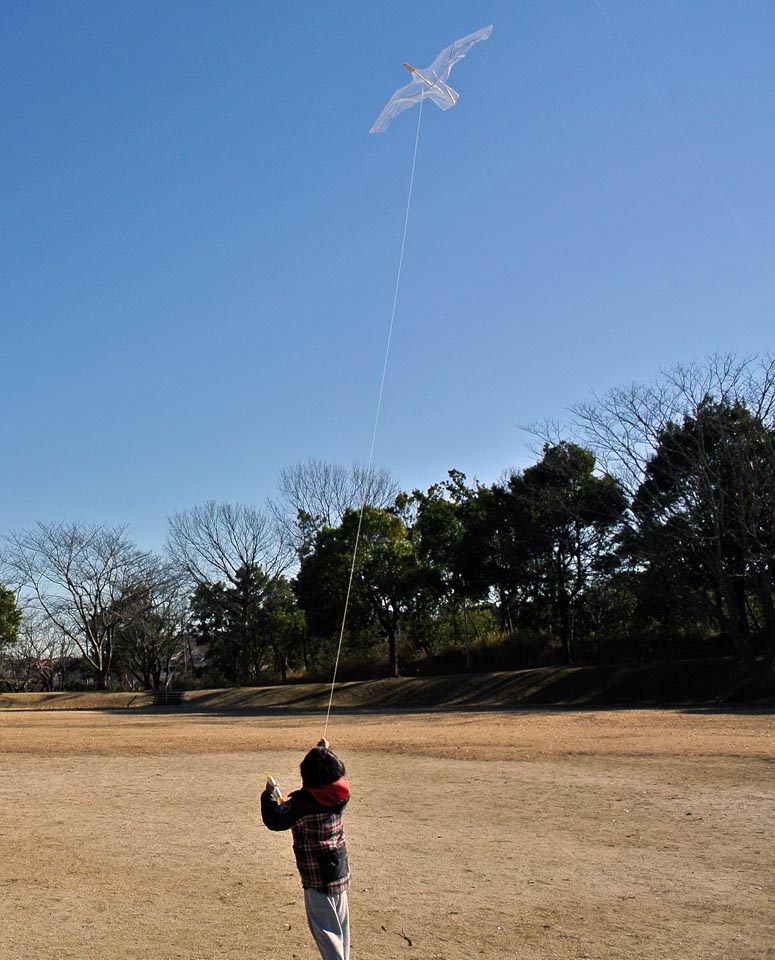 DSC_9025凧揚げ