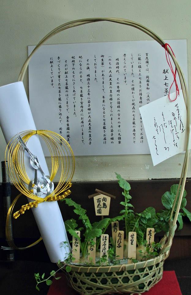 DSC_9336浅草