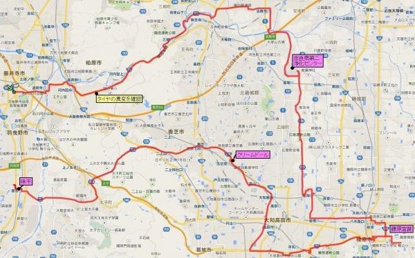 FujiwarakyuusekiCosmos_Route_org.jpg
