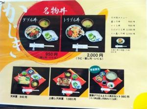 KenchomaeKajiki_000_org.jpg