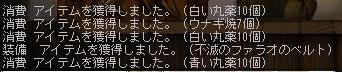 Maple100612_194542.jpg