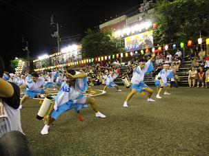 阿波踊り15