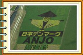 田んぼ2007