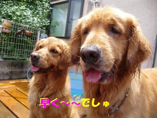 020_20100705002540.jpg