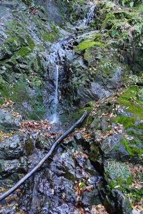 清龍寺の滝F1