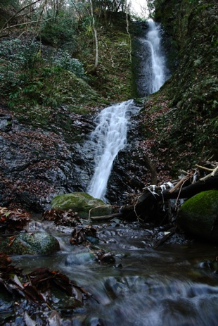 梶野沢の滝