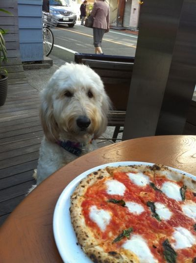 pizza_.jpg