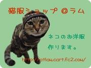 bar3_20121110204347.jpg