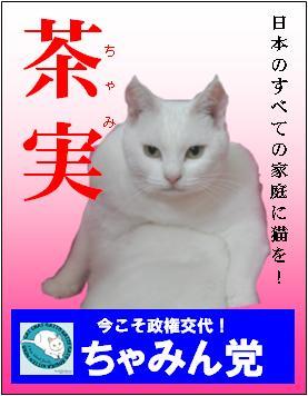sennkyo_20100711164715_20121117233857.jpg