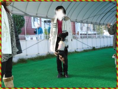CIMG0008_20111223235305.jpg