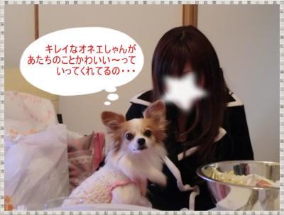CIMG0125_20120113230446.jpg