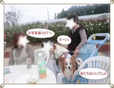 CIMG0197_20111107233319.jpg