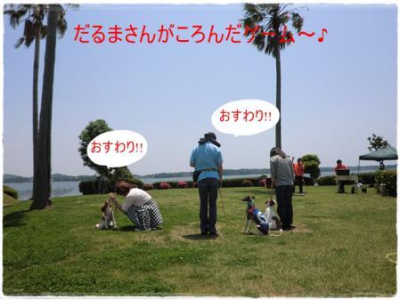 CIMG0200_20120602001437.jpg