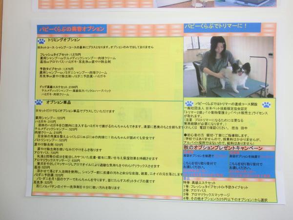 CIMG0818-2.jpg
