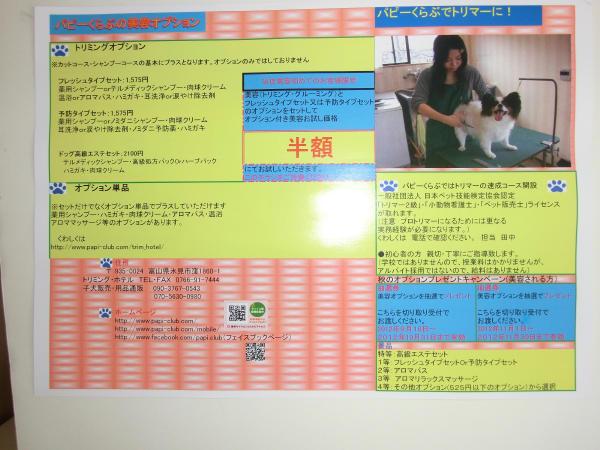CIMG0921-2.jpg