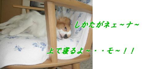 Blog 011