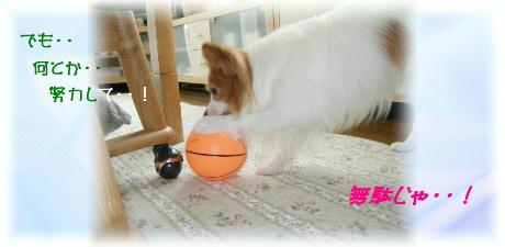 ボール遊び 003-1