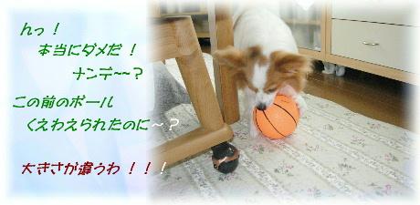ボール遊び 002-1