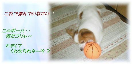 ボール遊び 000-1