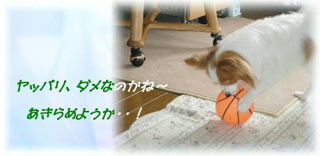 ボール遊び 006-1