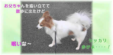 0-3-2 散歩 u