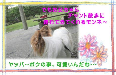 017 公園へ散歩