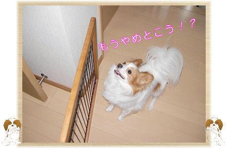 004-U-B オイ!何をやるきだ!