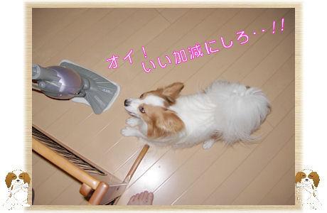 011-U-B