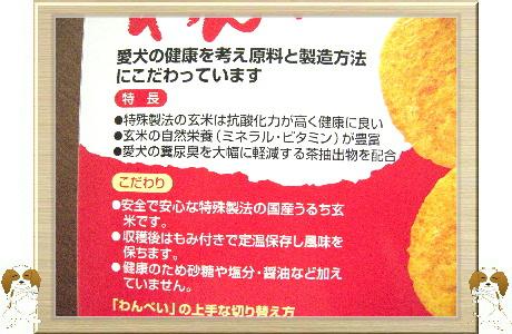 006-U-B わんべい